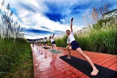 瑜伽,认真关照身体的每个细节