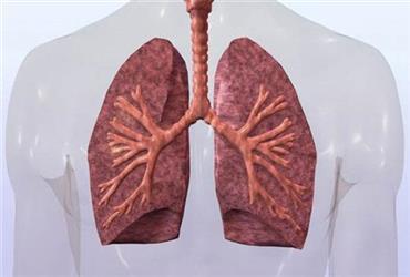 病毒转阴后,为什么肺却废了?